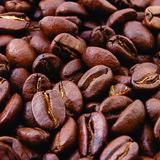 Himalaya Koffie 250g_